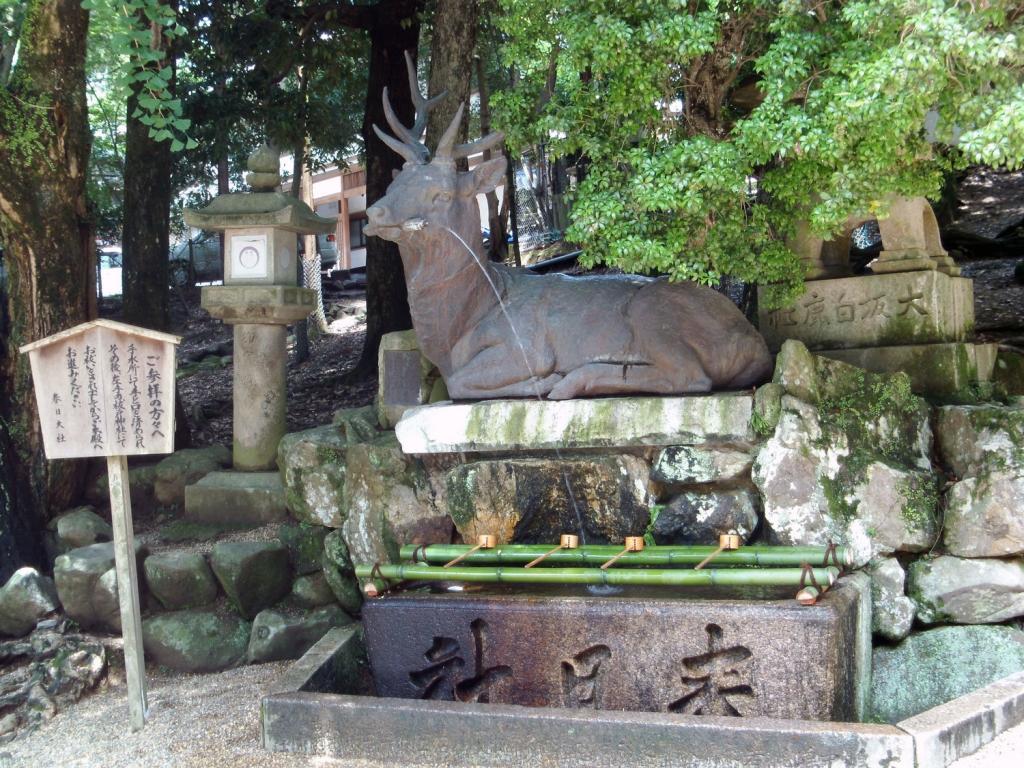 Reh-Springbrunnen in Nara
