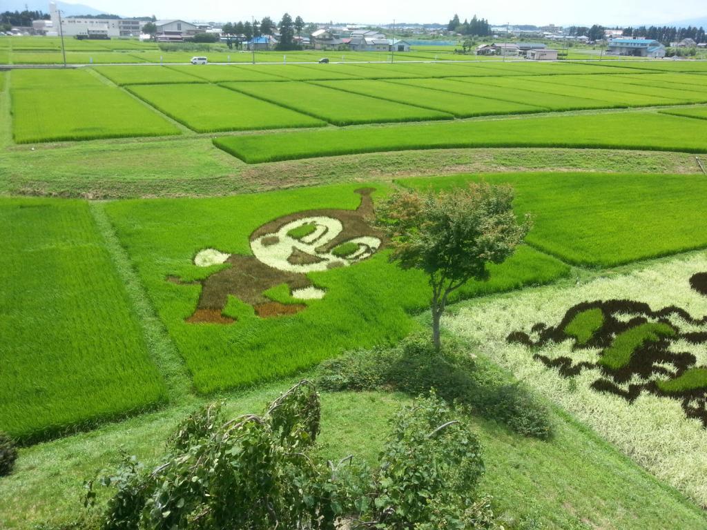 Reisfeldkunst in Oshu