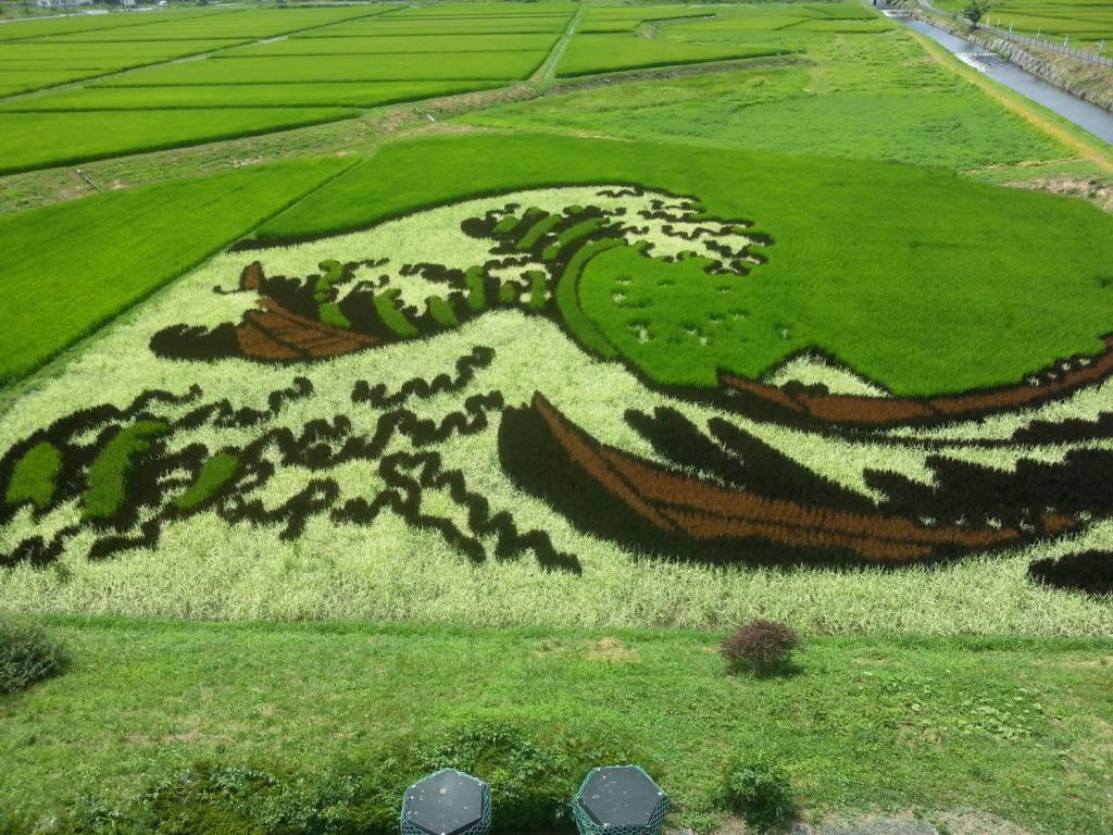 Reisfeldkunst Japanreise 2014