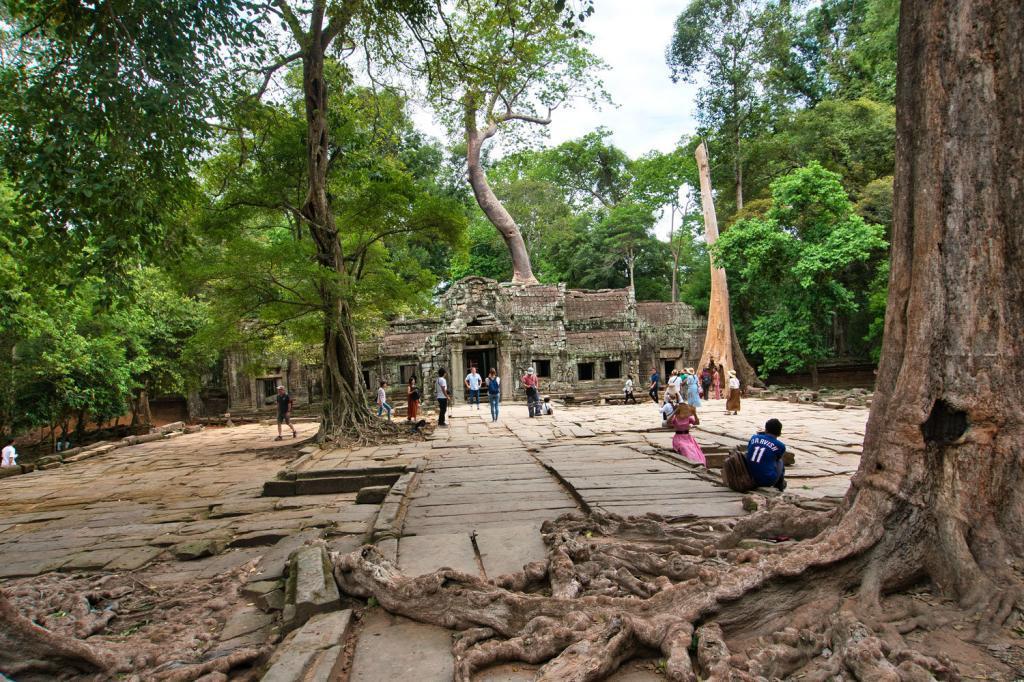 Blick auf den Ta Prohm in Kambodscha