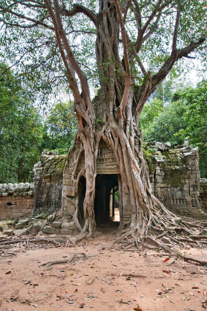 Beim beim Ta Som in Kambodscha