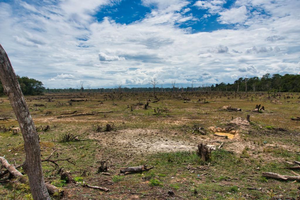 """""""See"""" vor dem Neak Pean in Kambodscha"""