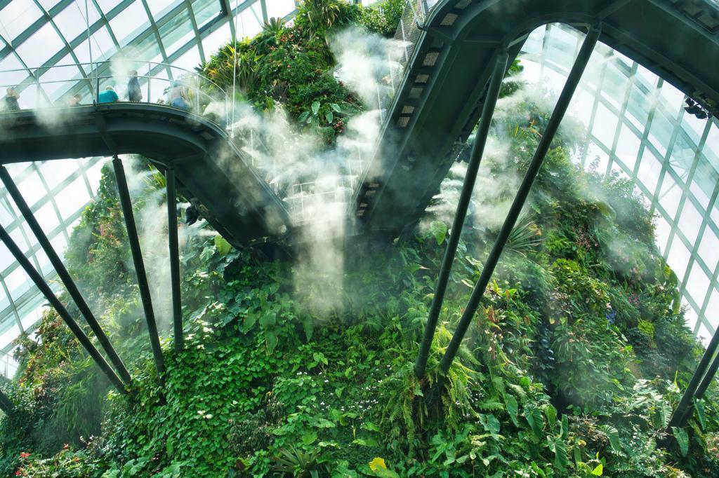 Cloud Forest in Singapur von Unten