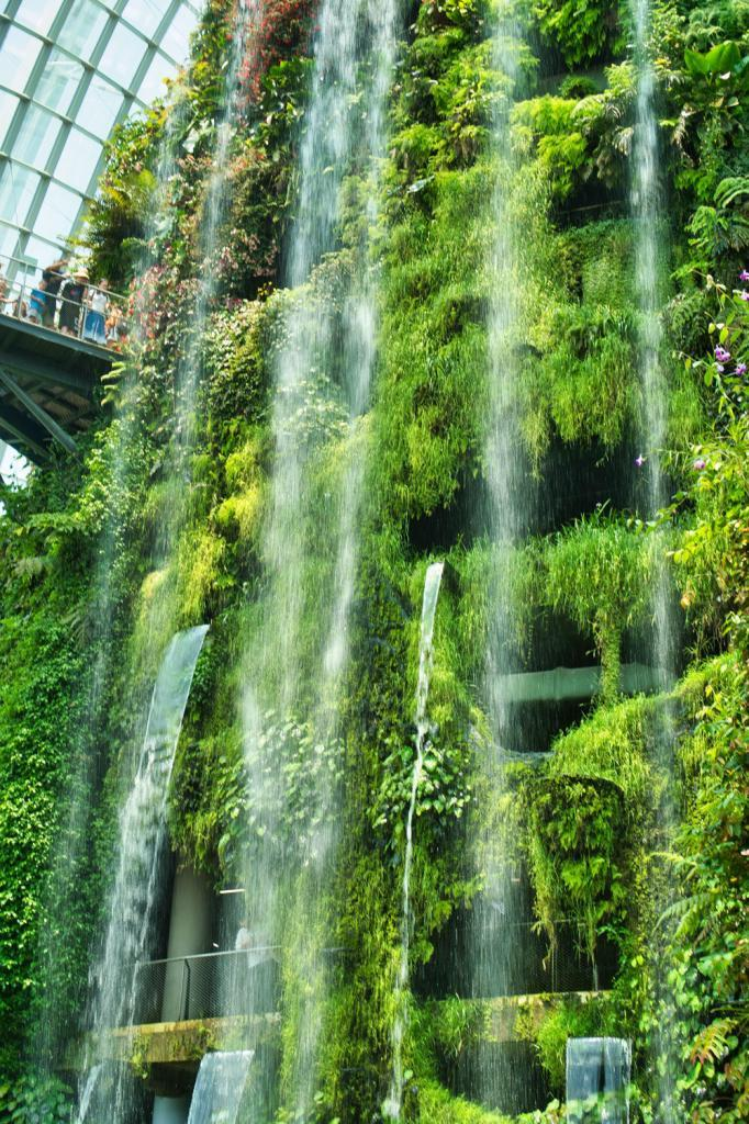 Cloud Forest in Singapur