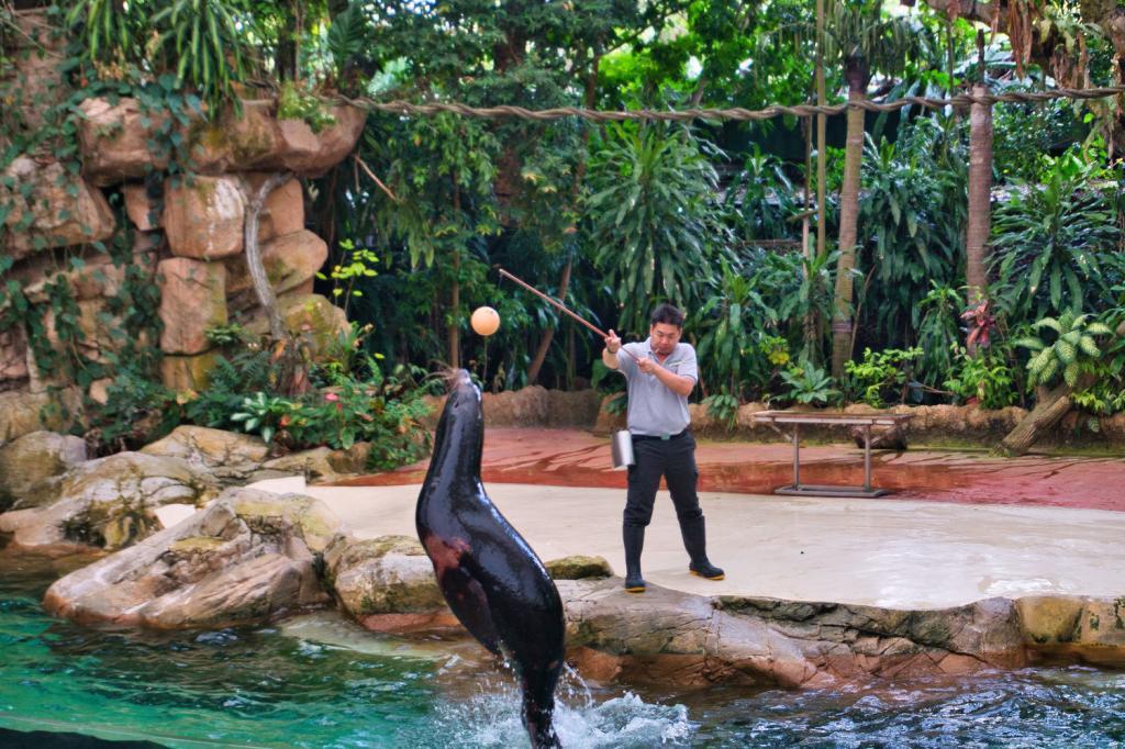 Splash Safari Show im Singapore Zoo in Singapur