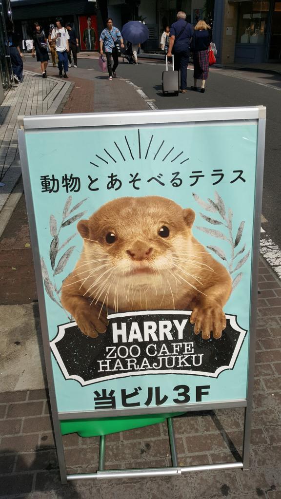 Schild vom Igelcafé in Harajuku