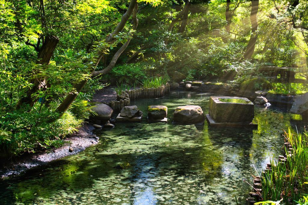 Ein Teich im Nezu-Museum in Tokio.