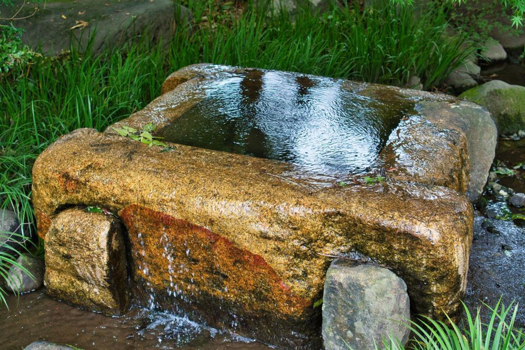 Japanischer Springbrunnen.
