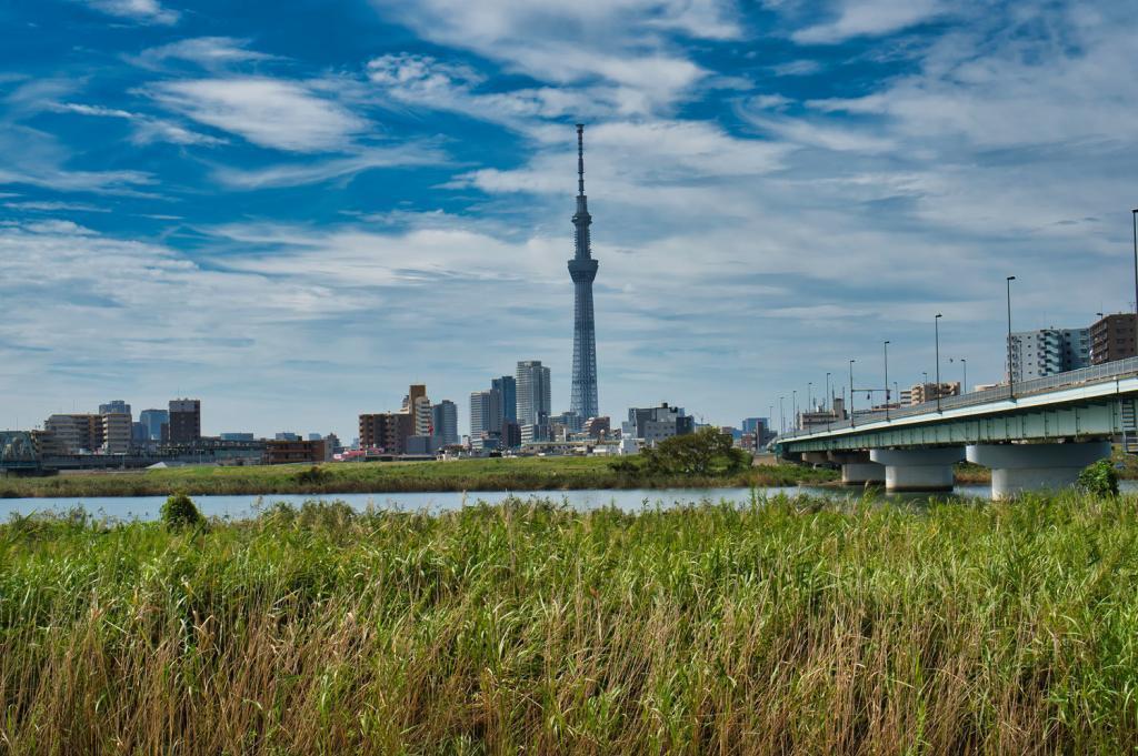 Skyline von Tokio von Katsushika aus.