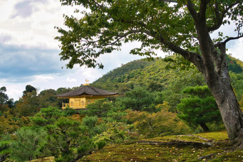 Ein anderer Blickwinkel auf den Kinkaku-ji.