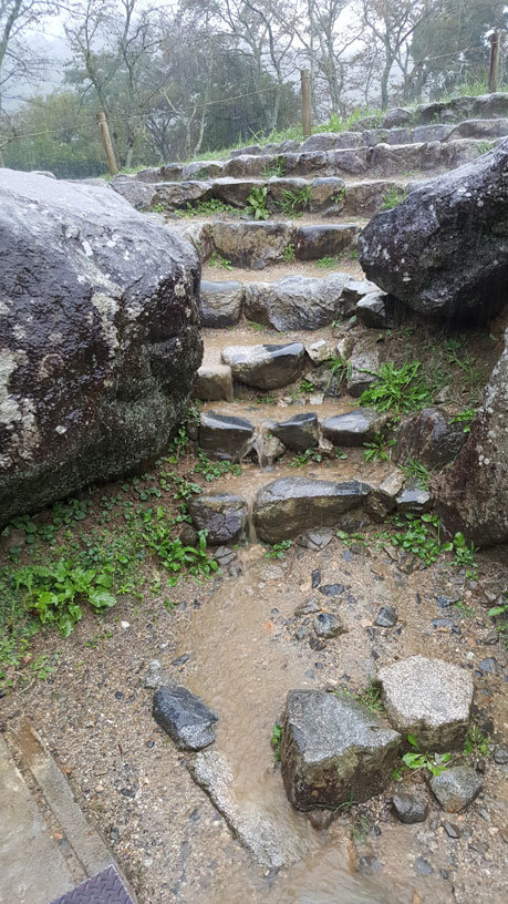 Steintreppe am Ishibutai Hügelgrab in Asuka, Nara bei strömendem Regen.