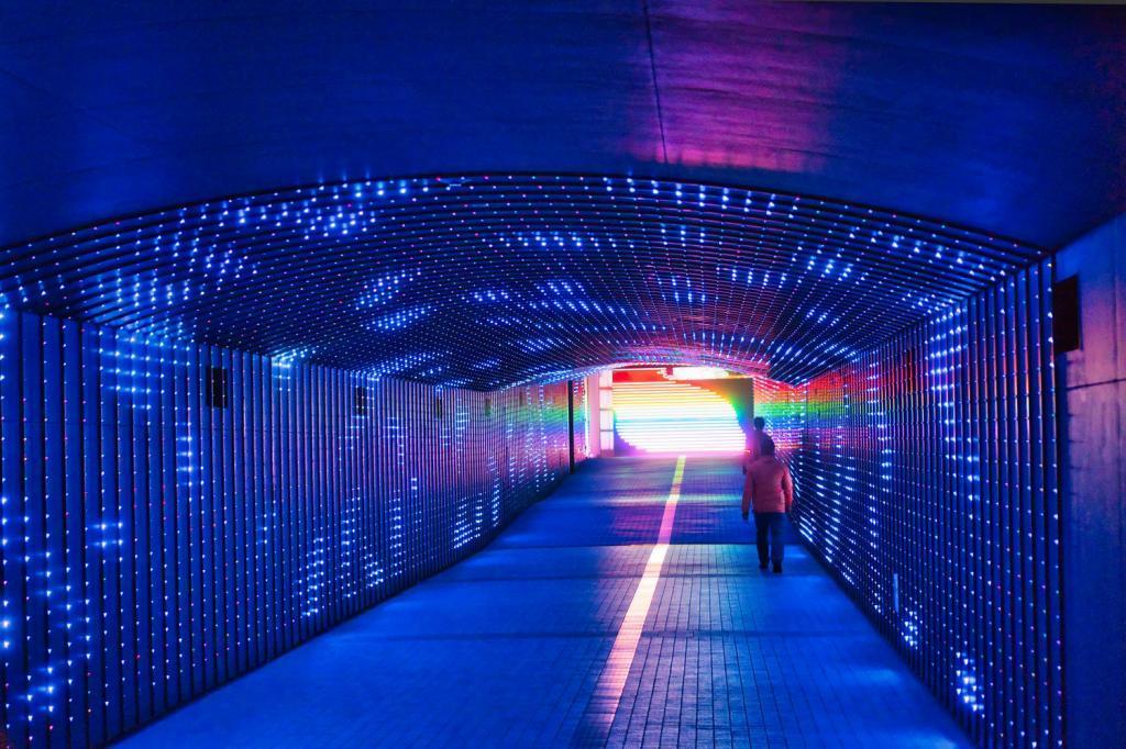 Tokyo Mega Illumi, Illumination an der Pferderennbahn in Tokio: Ein Regenbogentunnel.