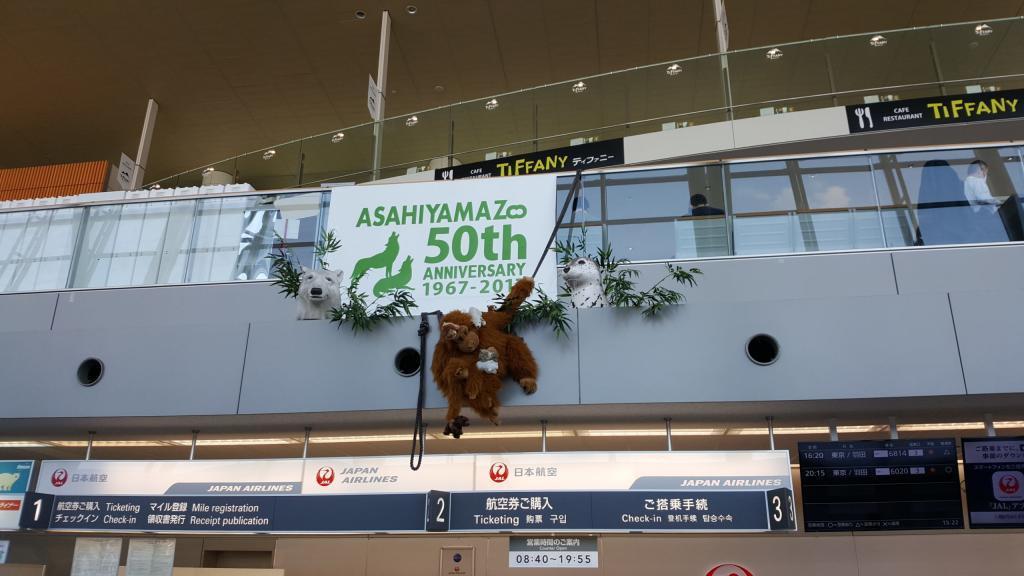 Flughafen von Asahikawa