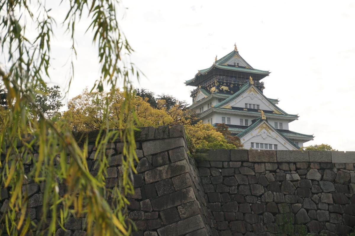Bild von Burg Osaka