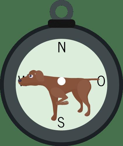 lustige japanische sprichwörter: ein Hund als Kompassnadel?