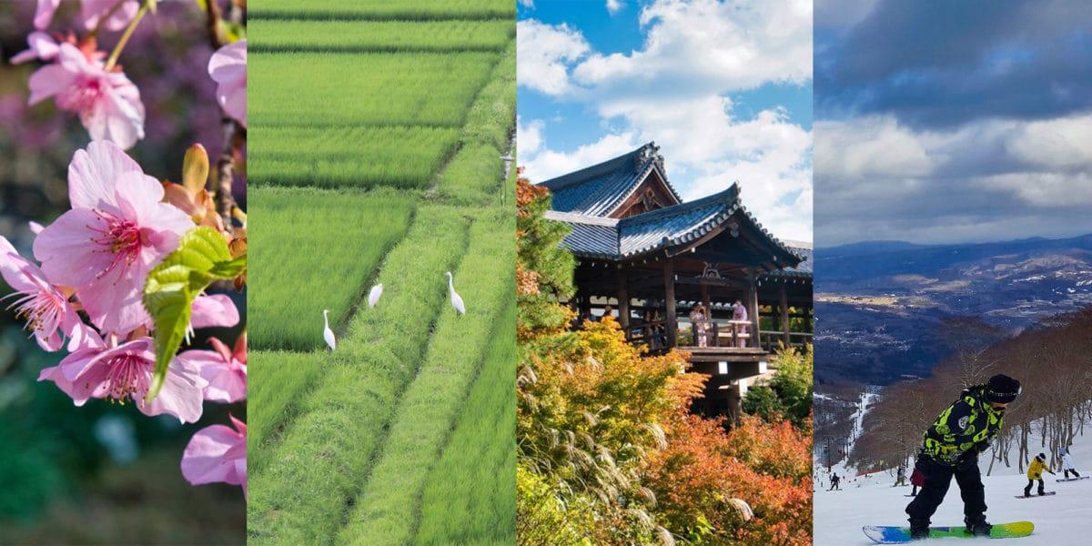 Die beste Reisezeit für Japan, die vier Jahreszeiten.