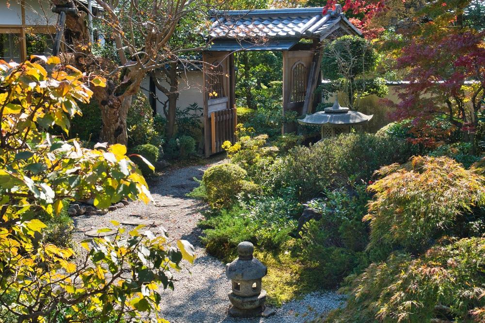 Japanischer Garten in Kyoto im Herbst