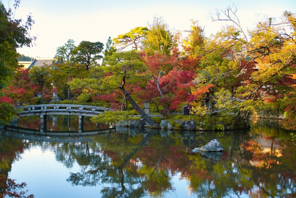 See mit Bäumen mit bunten Blättern in Japan im Herbst