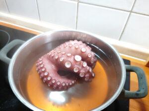 Der Oktopus nach dem er gekocht wurde.